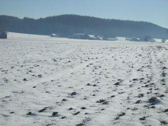 Feld schneebedeckt